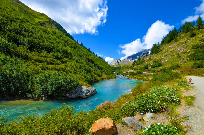 Aosta Italia Aostavalley Blue Cielo Cloud - Sky Forest Green Color Italy Landscape Mountain Nature No People River Scenics Sky Tranquil Scene Tranquility Tree Val Veny Water