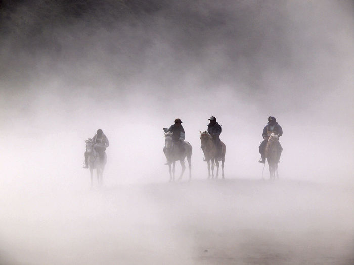 People Riding Horses On Field During Foggy Weather