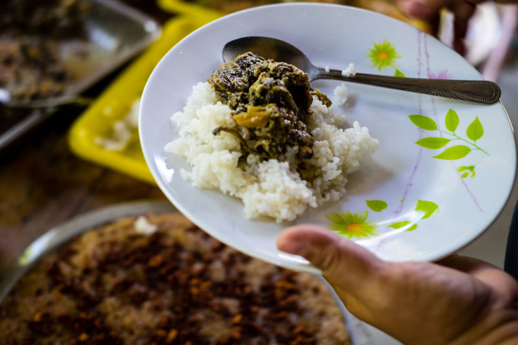 Laing is a tasty Filipino dish originated from the Bicol region of the Philippines Human Hand Food Food And Drink Hand Ready-to-eat Rice - Food Staple Freshness Human Body Part Holding Kitchen Utensil Plate Spoon One Person Table Eating Utensil Rice Meal Wellbeing Dinner Finger Crockery Lifestyles Isolated Vegetable Vegan Holiday Moments A New Perspective On Life