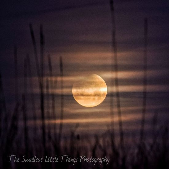 lunar eclipse, Super Moon, February 2018 The Smallest Little Things Photography Godsartwork Eyeemphotography EyeEm Best Shots Everything Is Beautiful Eyeem Artististic Naturelovers Nature_collection Beauty In Ordinary Things Supermoon2018 Lunar Eclipse Cloudy Night EyeEm Selects Stoneville, Nc Moon Watching Blood Moon 2018 Outer Space Happigramma Historical Awestruck Scientific Wonder Amazing Eyeem Lunar Eclipse EyeEm Best Edits Astronomy Photography The Man In The Moon Astronomy Night Close-up Space