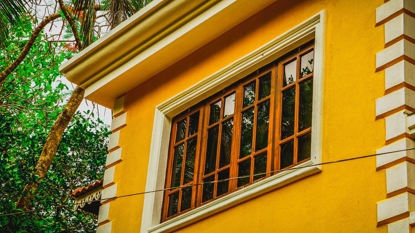 Yellow Mansion.. A home not a house. The Architect - 2018 EyeEm Awards Tree Yellow Window Architecture Building Exterior Built Structure Close-up Window Box Residential Structure Tiled Roof  Rooftop Country House Housing Settlement TOWNSCAPE Residential Building Residential District Growing Shutter Human Settlement Decorative Art Traditional Building House Roof Tile Exterior Roof Awning Building Ivy