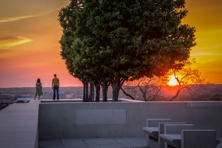 Rear View Of Man And Woman Standing On Retaining Wall By Tree During Sunset