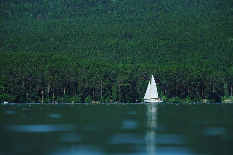 View of sailboat in lake