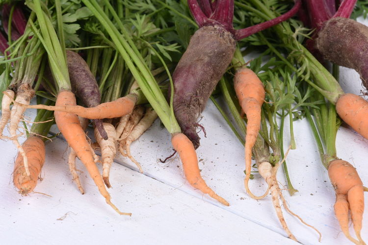 Healthy food early vegetable carrots, parsley and beet on old wooden table Diet Nature Beetle Carrot Close-up Day Dirt Food Food And Drink Freshness Green Color Healthy Eating High Angle View Nature No People Organic Parsley Plant Plant Part Raw Food Root Vegetable Still Life Vegetable Vitamin Wellbeing