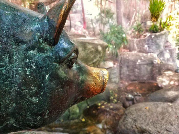 Close-up of horse statue