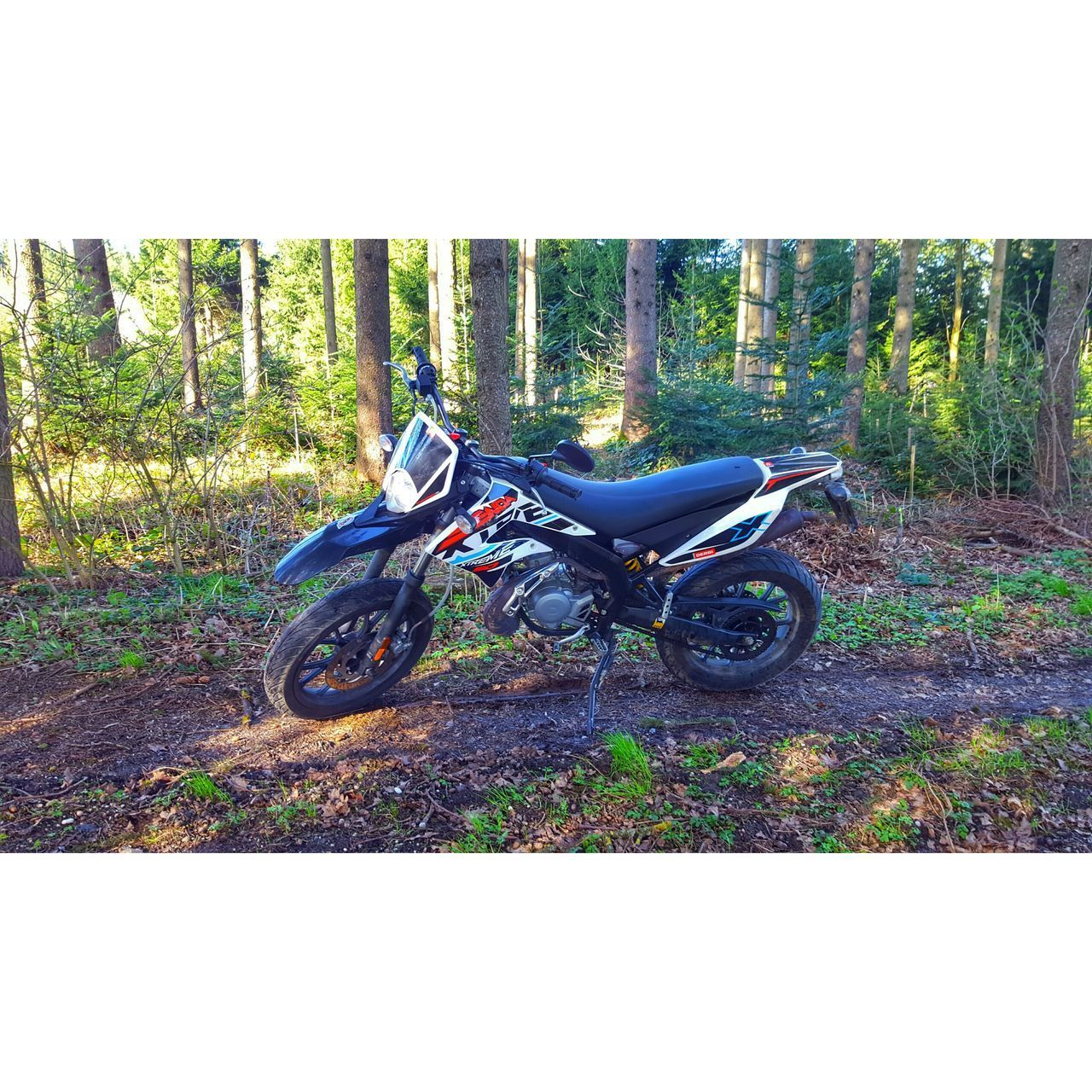 motorcycle, day, transportation, crash helmet, outdoors, land vehicle, helmet, men, real people, motocross, tree, one person, nature, people