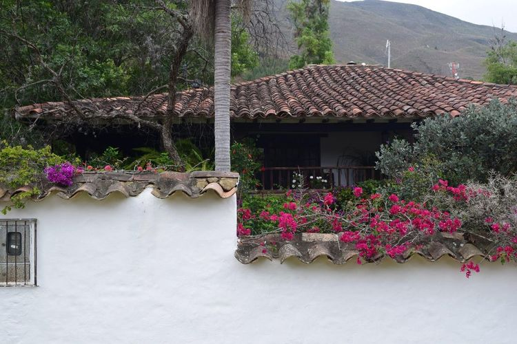 From My Point Of View Landscape Taking Photos Pueblo Pueblomagico House Sin Filtros