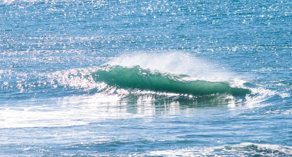 Wave Beauty In