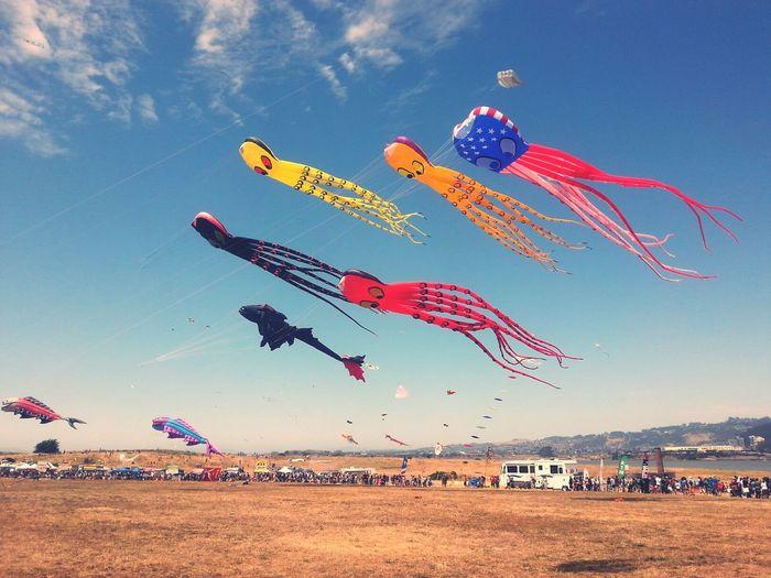 People Watching Kite Festival Berkeley