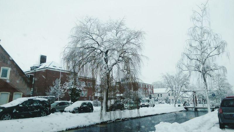 Papenburg Snow Schnee