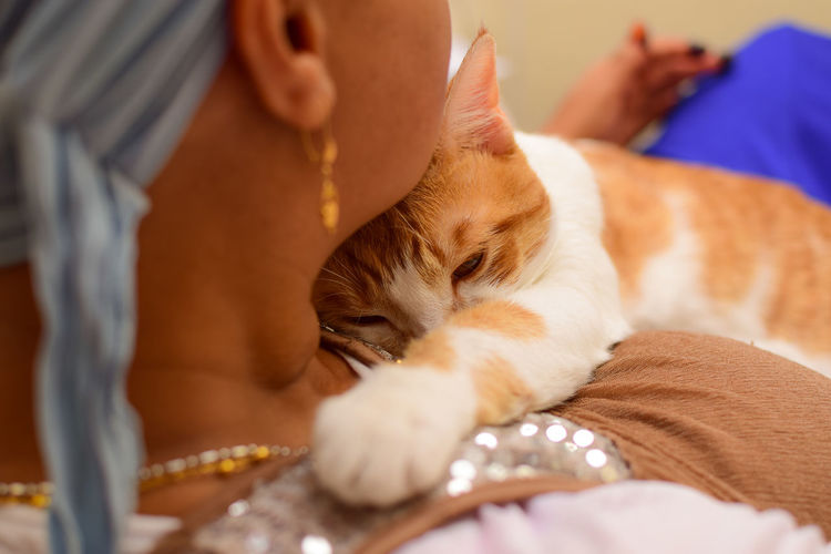 In that cuddle moment Cats Of EyeEm EyeEm Best Shots EyeEm Selects Bed Care Cat Domestic Domestic Animals Domestic Cat Feline Furniture Indoors  Lying Down Mammal One Animal People Pet Owner Pets Relaxation Resting Selective Focus Sleeping Vertebrate Whisker The Portraitist - 2018 EyeEm Awards