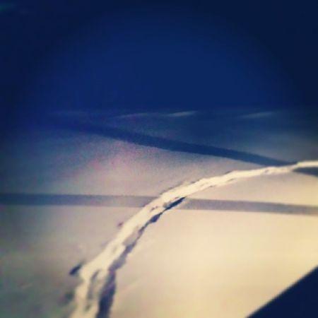 Dog trail by porch-light. Winterproblems Winter Vt Vtphoto vermont vermontbyvermonters greenmountainstate instagood
