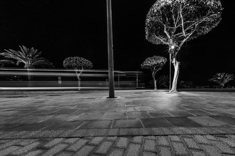 Illuminated tree by footpath against sky at night