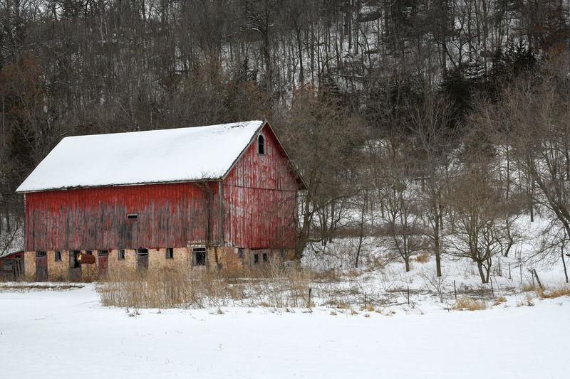 Weathered red barn in winter
