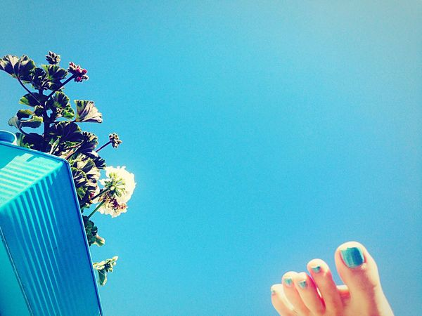 Recalling the summer. Perfect Match Blue Album Blue Blue Sky From My Point Of View Foot Flower Summertime Selfportrait The Essence Of Summer