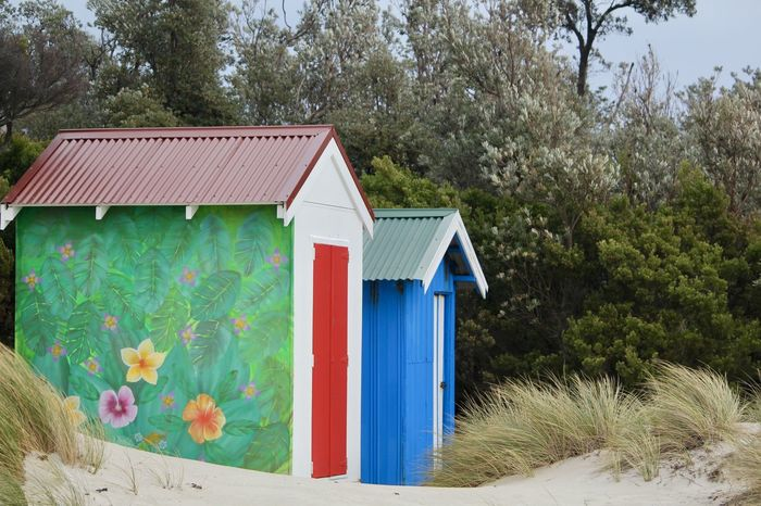 boatshed bliss Bright Colors Daytime Green Architecture Beachphotography Blue Boatsheds Building Exterior Built Structure No People Roof Sandy Beach Trees And Sky Two