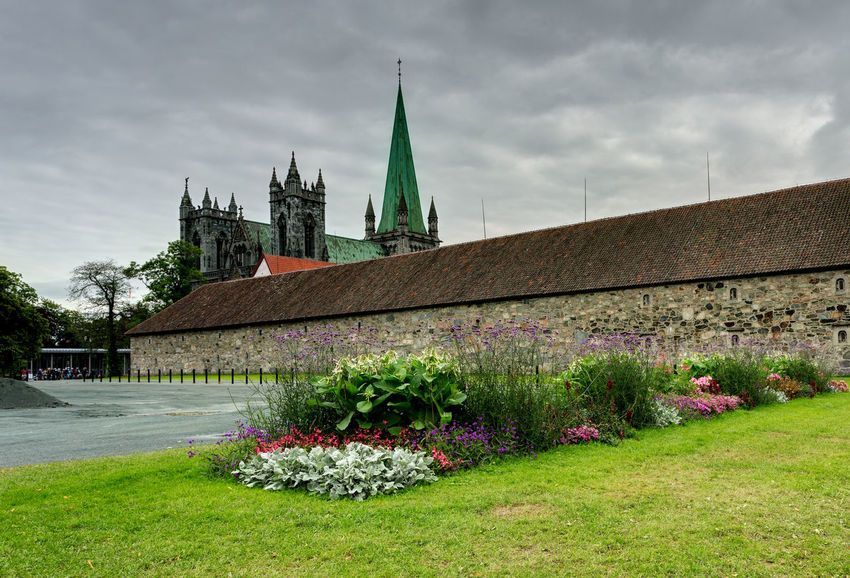 Urban landscape in Norway,Trondheim Cathedral Cityscape Nidaros Cathedral Nidarosdomen Norway Travel Trondheim Architecture Belief Building Building Exterior Built Structure Cathedrale Cityscape Photography Cloud - Sky Flower Flowering Plant Grass Green Color Nature Nidaros Nidaros Cathedral No People Norway Nature Outdoors Place Of Worship Plant Religion Sky Spire  Spirituality Tower