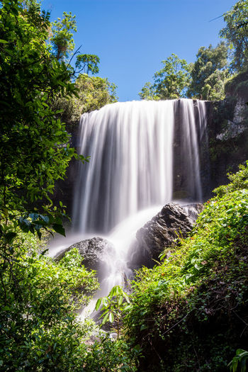 Australia Blue Forest Green Landscape Landscape_Collection Landscape_photography Landscapes Landscapes With WhiteWall Nature Rainforest Water Waterfall