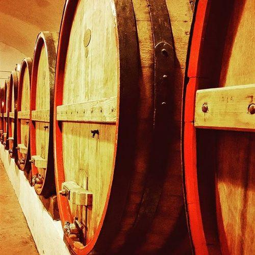 Wine Winetasting Winetime Winecask Villaschinosa Puglia Likeforlike Like4like Instamagazine_ Instagramhub