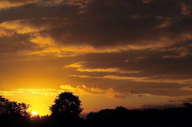Beautiful sunset Cloudy Sky Fireinthesky Sun Sunset Clouds Nature Waitingforthenight Presentofnature