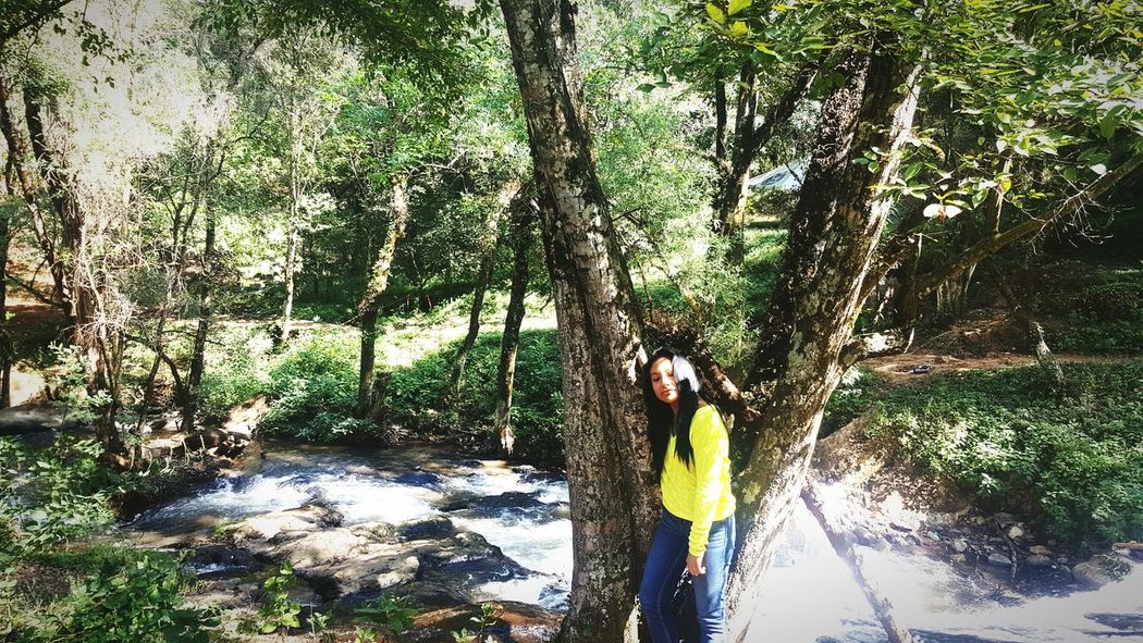 descansando un rato Valle De Bravo Valledebravo Holidays Relax One Person Nature Tree Green Color Day Beauty In Nature Bamboo - Plant Picture Naturephotography Cdmx Cdmx 😀 Mx  Timetoscape Travel Vacation Tree Beauty In Nature ValledeBravo Prettygirl Photography Beauty Morena Cute