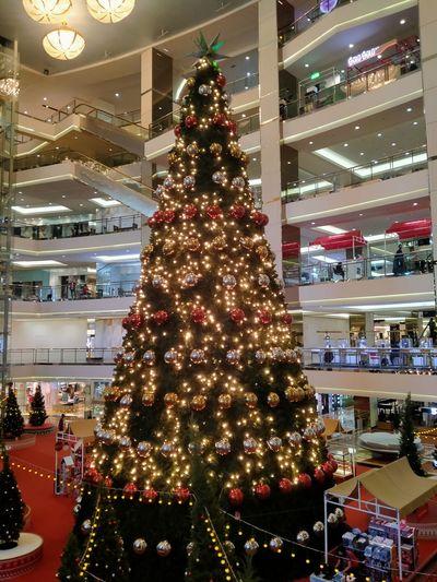 Illuminated christmas tree in shopping mall