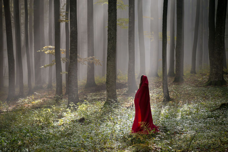 Woman with red hood standing by tree trunks in forest