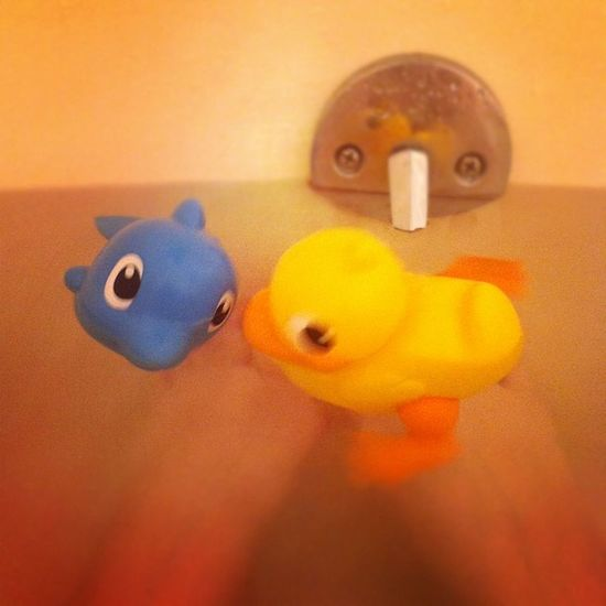 Bath Toys Bathtoys Swimming iphonesia club_social jj all_shots webstagram
