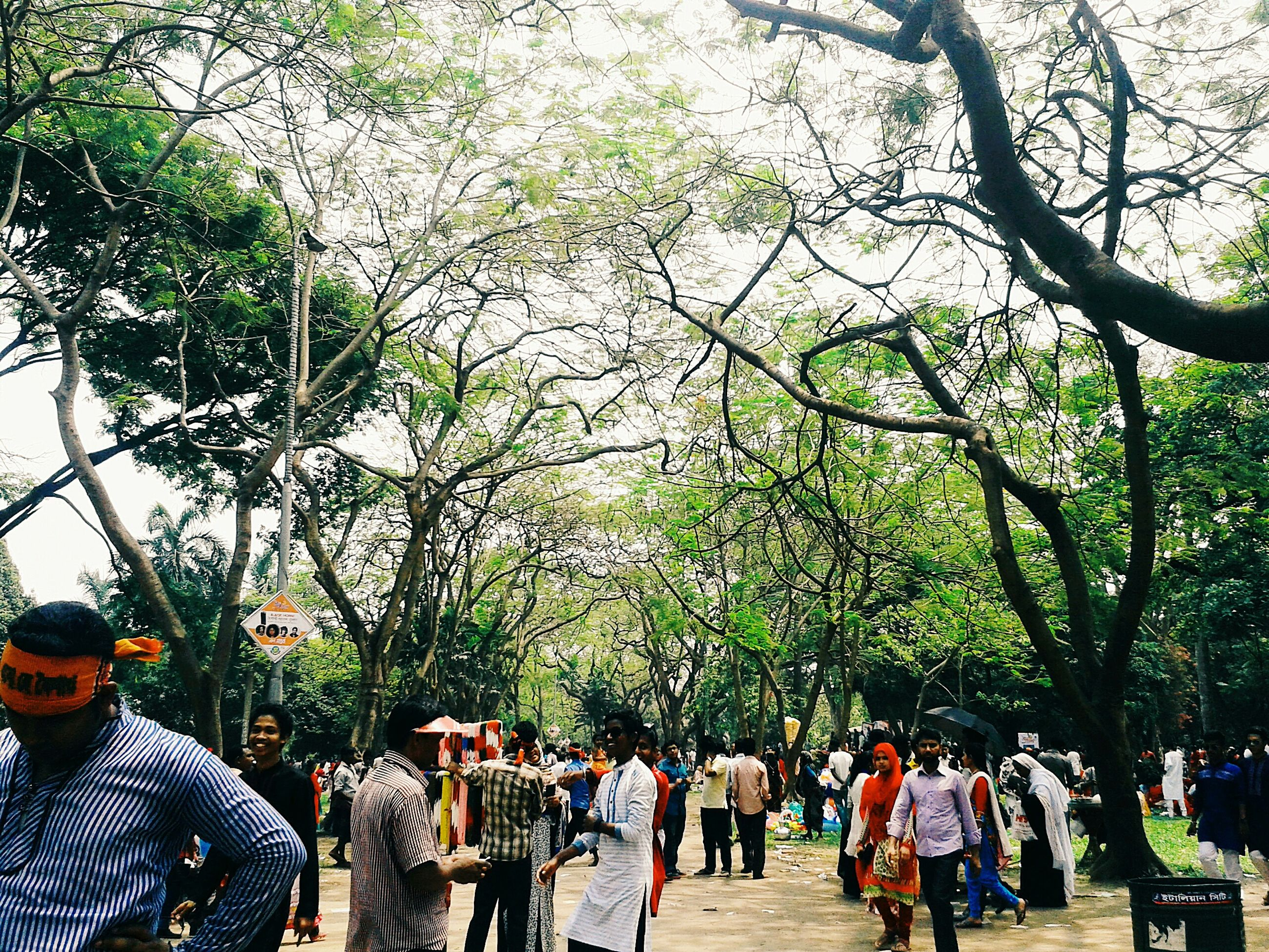 tree, men, lifestyles, large group of people, person, leisure activity, walking, growth, mixed age range, togetherness, nature, park - man made space, rear view, day, green color, outdoors, footpath, casual clothing, medium group of people