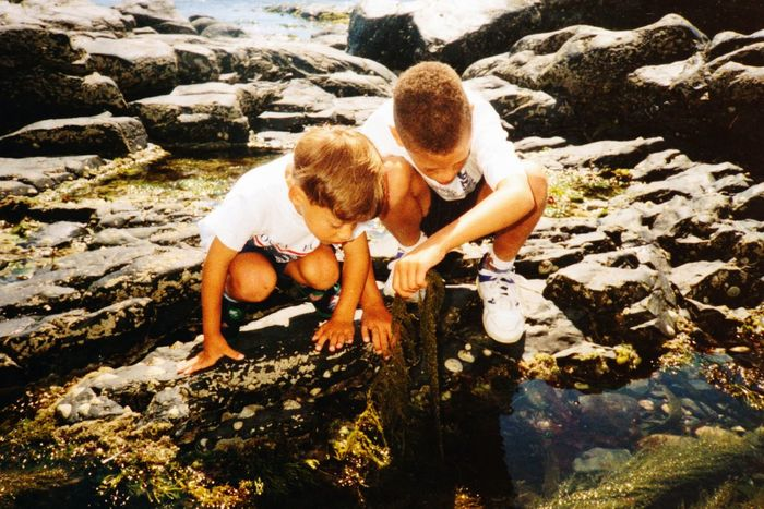 What's in the rock pool? Two People Love Togetherness Bonding Outdoors Leisure Activity Day Sunlight Friendship Real People Vacations Nature Boys Rockpooling Crabs brothers children looking in Rockpool seaside warm day sunny day learning from nature ocean Cornwall UK Film Photography