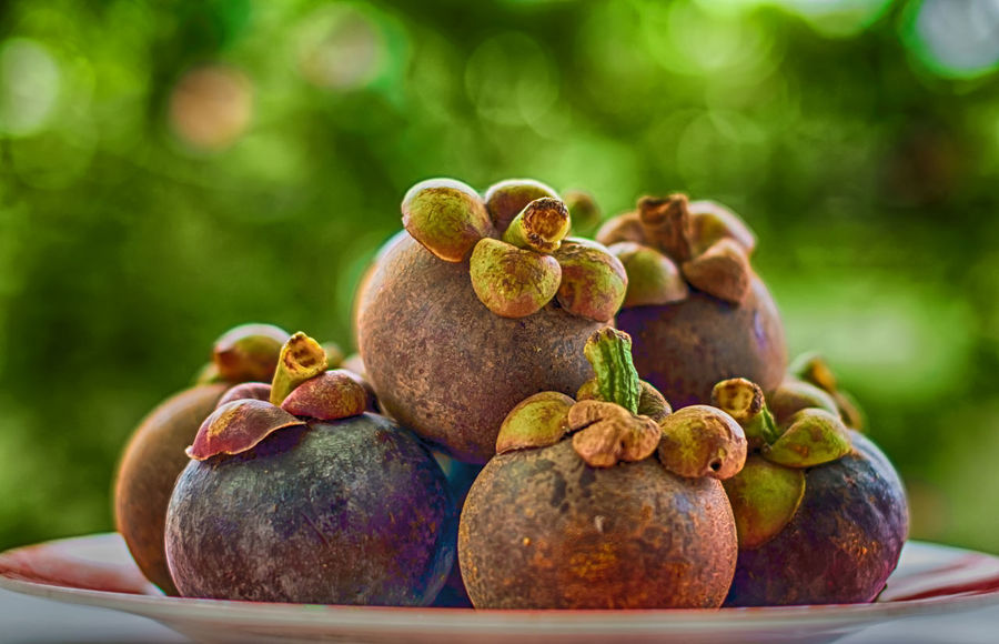 Close-up Day Focus On Foreground Food Food And Drink Freshness Fruit Healthy Eating Mangosteen Mangosteen Fruit Nature No People Outdoors