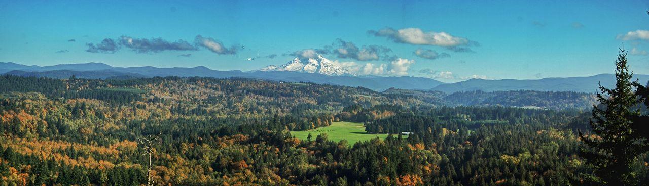 Panorama Mt