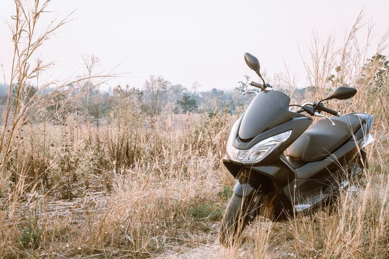Motorbike parked by the way Bigbike Motercycle Travel Plant Sky Nature Clear Sky Day Mode Of Transportation Field Outdoors Land Vehicle Grass Sunlight Landscape Copy Space Tree Land Growth