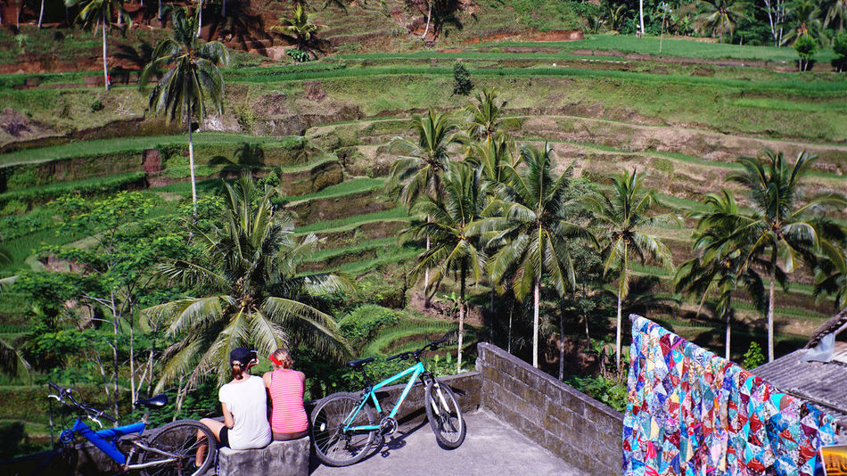 Tourist enjoying magnificent view at Tegallalang Rice Terace, Ubud, Gianyar, Bali, Indonesia Bali Nature Sony A6300 Tegallalang Rice Terraces Forest Gianyar Rice Field Sony Ubud