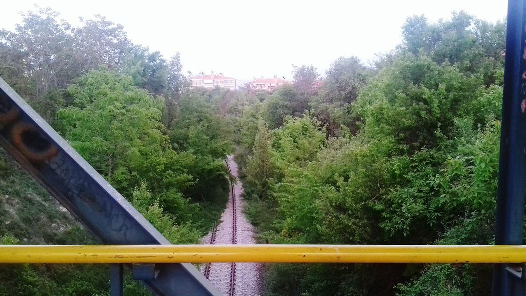 Tree Nature Outdoors Bridge - Man Made Structure No People Day Sky Footbridge Beauty In Nature Railway Rails Old Rails Of Life Green Trees Springtime May Taking Photos Hello World Hi! Hey There :) Beauty In Nature View Growth Sky And Trees Nature And Architecture Your Ticket To Europe