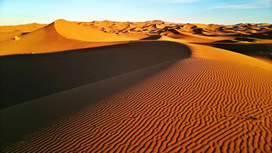 Scenic view of sahara desert against sky