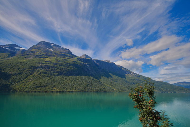 Still in Lodalen, Norway Water Beauty In Nature Sky Mountain Scenics - Nature Tranquility Tranquil Scene Cloud - Sky Lake Non-urban Scene Waterfront Nature No People Day Reflection Idyllic Tree Plant Environment Outdoors Lodalen Norway Scandinavia Travel Destinations Travel Adventure