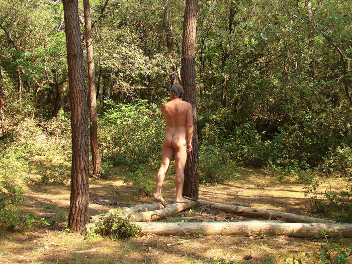 Naked Man Standing By Tree At Forest
