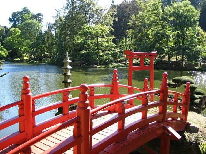 red Love orient. ... Relax❤️ Parco Colours Of The Orient Zen Life's Simple Pleasures...