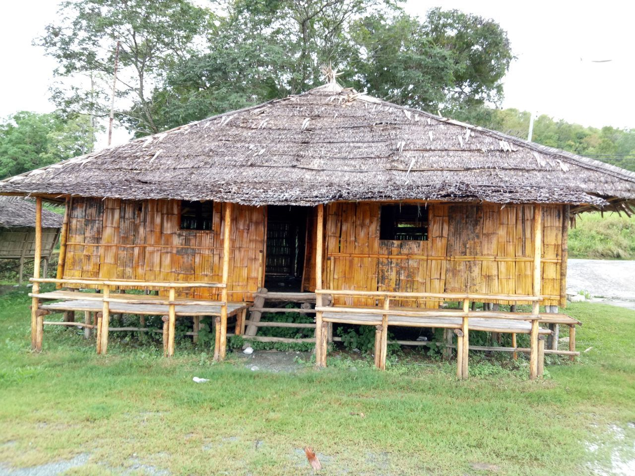 thatched roof, built structure, hut, wood - material, outdoors, building exterior, day, architecture, no people, grass, abandoned, nature, tree, beauty in nature
