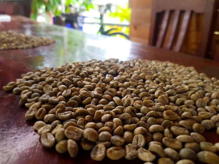 Coffee is life Coffee Coffee Production Coffee Shop Caffeine Green Coffee Arabica Thai Coffee Peaberry Wood Wooden Table Near Focus Close-up Food And Drink Raw Coffee Bean Coffee Bean Coffee Crop