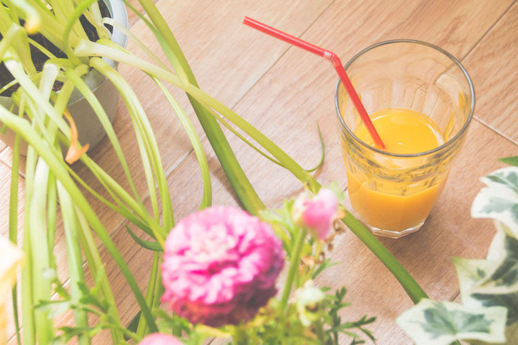 High angle view of fresh orange juice by plants on table