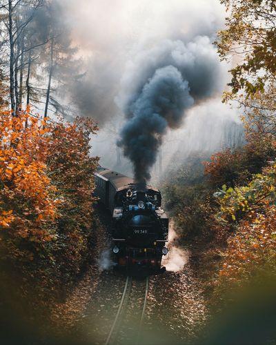 Train emitting smoke amidst trees during autumn