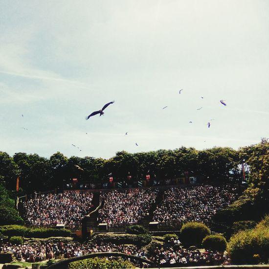 Le bal des oiseaux fantomes au Puy du Fou Puy Du Fou Bal Oiseaux Fantômes
