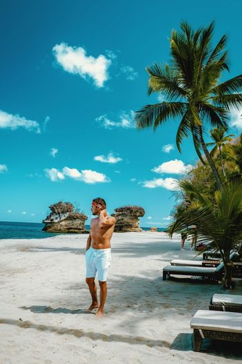Beach Life Beach Boy Boys Fut  Healthy Lifestyle Sun Palm Tree White Tropical Climate Tropical Saint Lucia Men St Lucia Man Swimming Beach Boy Colourful Mensfashion Tree Palm Tree Sea Full Length Beach Men Young Women Water Sand Standing Tropical Tree