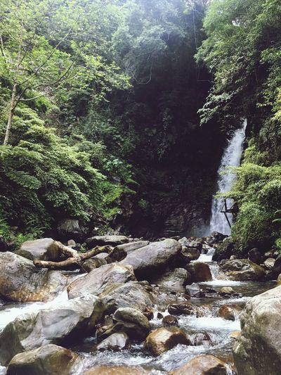 費了千辛萬苦,終於來到谷關蝴蝶谷瀑布了 Travel Landscape The Great Outdoors - 2018 EyeEm Awards EyeEm Taiwan EyeEm - Taiwan The View And The Spirit Of Taiwan 台灣景 台灣情 The Traveler - 2018 EyeEm Awards Sunlight Day Tree Nature Plant Water Rock