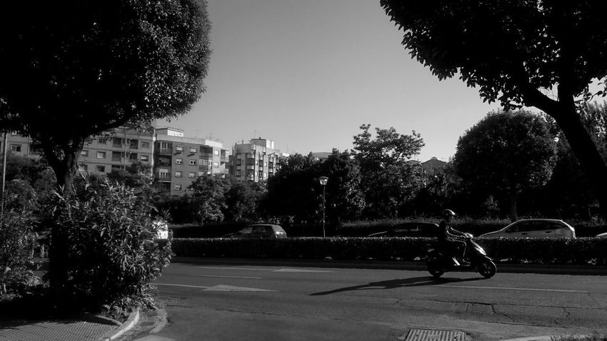 Architecture Blackandwhite Blak And White Building Exterior City Day Leisure Activity Lifestyles Light And Shadow Men Monochrome Motion Moto Motorcycles Nature Outdoors People Real People Shadow Sky Sunlight Transportation Tree