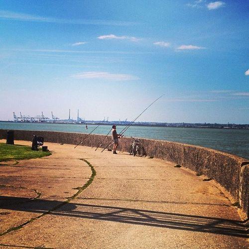 Fishing time... Fish , Fishing , Harbor , Honfleur , normandy , instamoment