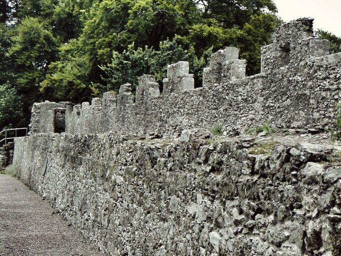 Castle Ruin Blarney Castle Stone Wall Abandoned Places Eyeem Ireland Historical Sites Cgk Photography