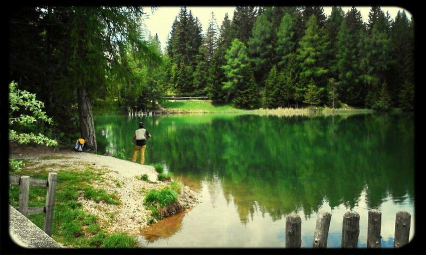 EyeEm Nature Lover